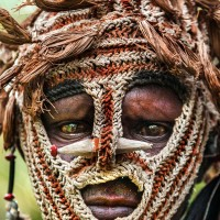 Bones through noses, feathered headdresses and painted faces: Stunning photos offer a glimpse into Indonesia's rarely seen tribes