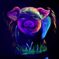 pig body paint from uv class.